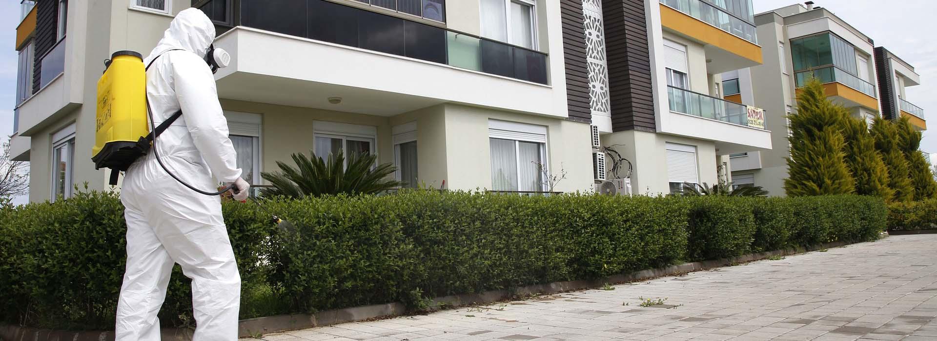Deratyzacja i dezynfekcja obiektów komercyjnych, mieszkalnych i usługowych